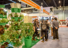 Also vertical farming is gaining attention of small scale Thai growers who are looking for an innovative concept.