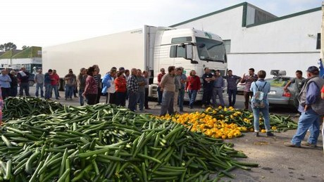 crisis management in spanish horticultural industry