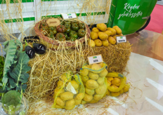 During the exhibition they launched their potato varieties.