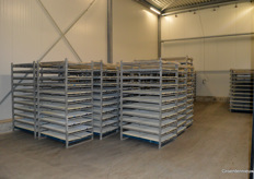 Next is germination in a temperature which is a 'company secret'. The racks are temporary, it will all be containers which make the proces even more automated.