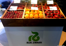 Some fresh produce and systems on display at the Rijk Zwaan stall.