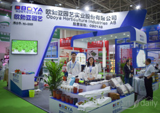 Echo & Liu with Oboya Horticulture Industries.