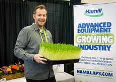 The team with Hamill is currently working hard to get the new website up and running, showing videos of their automated harvest solutions and at the same time providing growers in both America as Europe with their products. In the photo Kevin Hobbs.