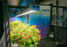 The Thrive Agritech lighting fixtures.