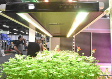Supplied with PARUS LED grow light trolley unit