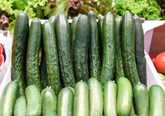 This is the typical cucumber type that can be found in many of the Japanese greenhouses. The Gracie variety is one of the varieties that comes from the Japanese breeding pipeline of Rijk Zwaan.