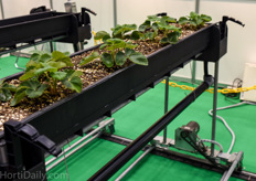 Low cost movable hydroponic gutter system.
