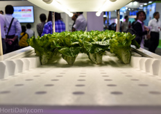 Panasonic's approach; vertical farming with stackable styrofoam trays.