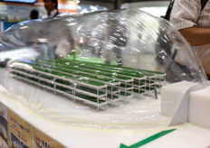 Inflatable greenhouse vertical farm?