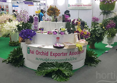 And various multi-coloured orchids shown by the Thai Orchid Exporter Association