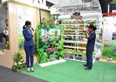 Explanation on hydroponic growing by Thai Advance Agri Tech Co.