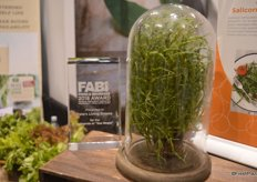 """Pete's Living Greens won the Food & Beverage 2018 award for its Salicornia or ""Sea Beans""."""