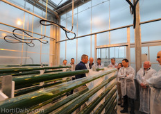 The algae prefer a temperature of 35 degree Celsius. This could also make it attractive for greenhouse growers to combine the cultivation with common greenhouse crops, however both crops need a certain amount of light. This is a challenge at the moment, but researchers are in search of a solution for this.